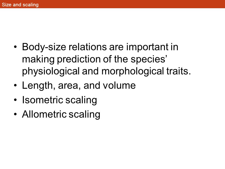 Figure 1.8 Length of gestation scales as a regular function of body size in mammals
