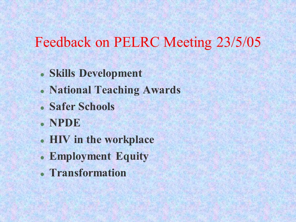 Feedback on PELRC Meeting 23/5/05 l Skills Development l National Teaching Awards l Safer Schools l NPDE l HIV in the workplace l Employment Equity l