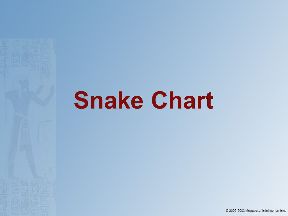 © 2002-2003 Megaputer intelligence, Inc. Snake Chart