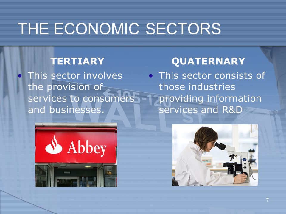 THE ECONOMIC SECTORS TERTIARY This sector involves the provision of services to consumers and businesses.