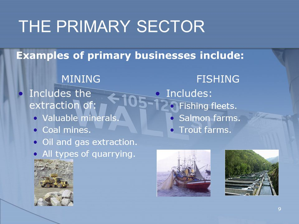 THE PRIMARY SECTOR Examples of primary businesses include: MINING Includes the extraction of: Valuable minerals.