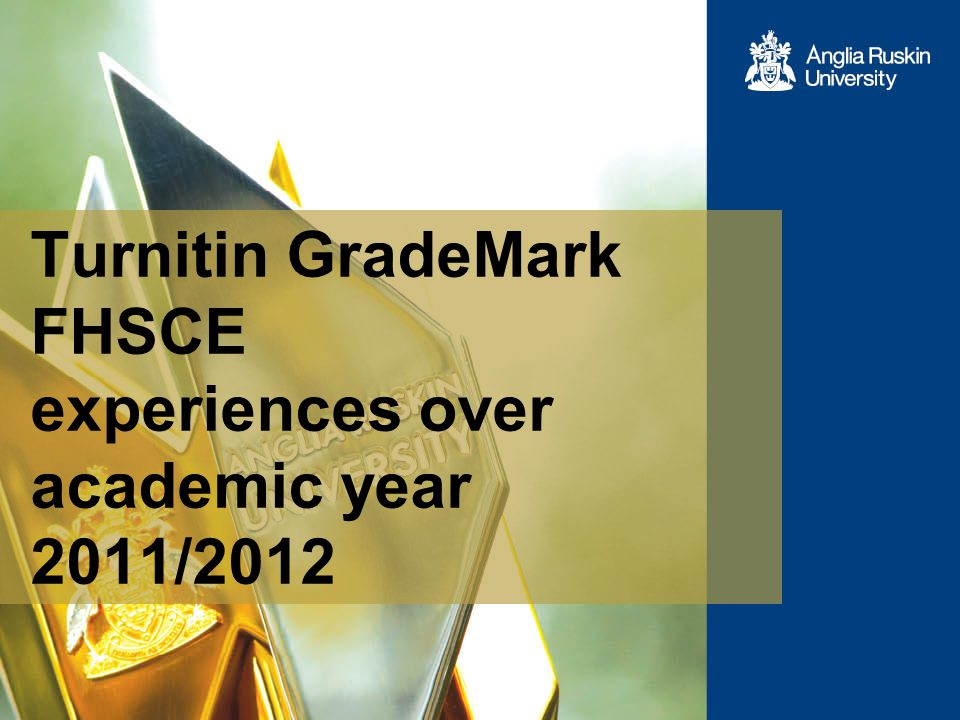 Turnitin GradeMark FHSCE experiences over academic year 2011/2012
