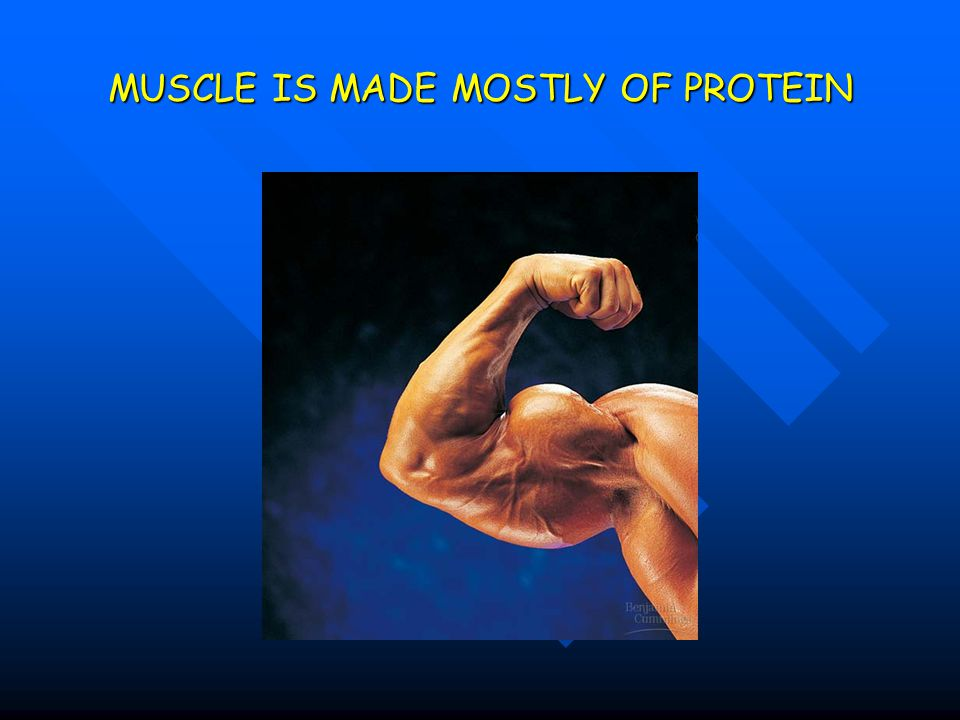 MUSCLE IS MADE MOSTLY OF PROTEIN