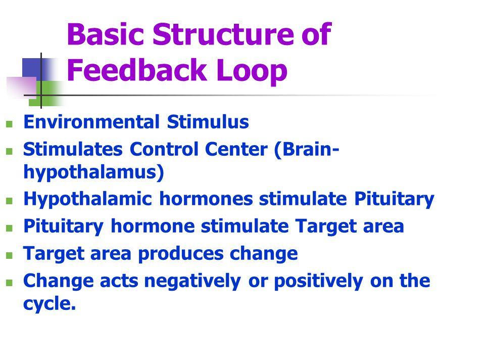 Basic Structure of Feedback Loop Environmental Stimulus Stimulates Control Center (Brain- hypothalamus) Hypothalamic hormones stimulate Pituitary Pitu