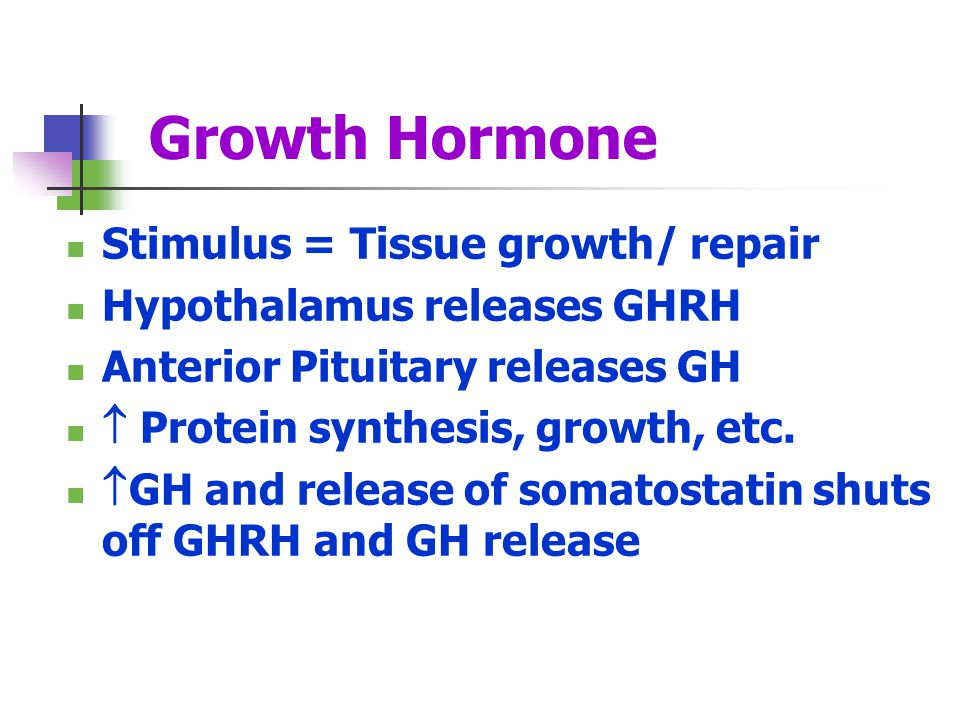 Growth Hormone Stimulus = Tissue growth/ repair Hypothalamus releases GHRH Anterior Pituitary releases GH Protein synthesis, growth, etc. GH and relea