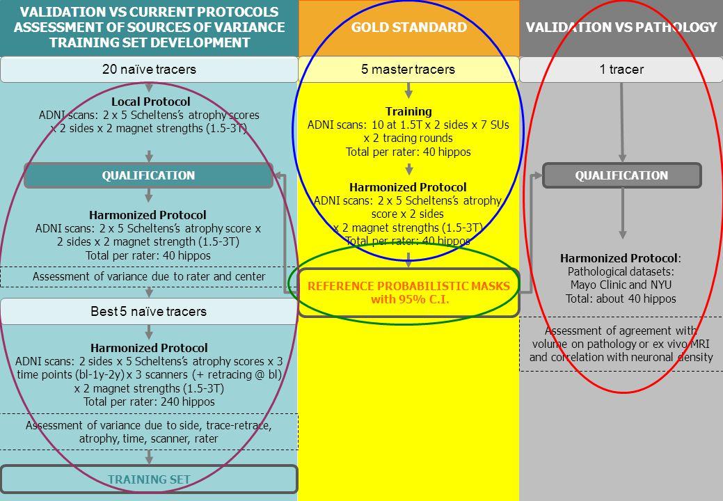 VALIDATION VS CURRENT PROTOCOLS ASSESSMENT OF SOURCES OF VARIANCE TRAINING SET DEVELOPMENT VALIDATION VS PATHOLOGY GOLD STANDARD Harmonized Protocol A