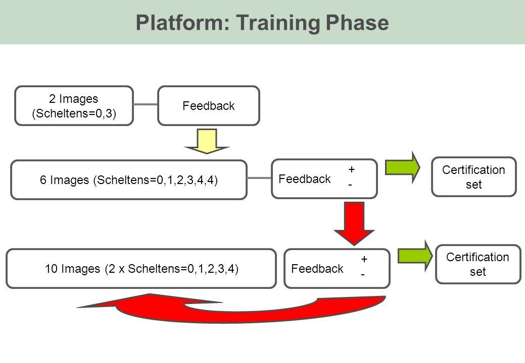 Platform: Training Phase 2 Images (Scheltens=0,3) Feedback 6 Images (Scheltens=0,1,2,3,4,4) Feedback +-+- Certification set 10 Images (2 x Scheltens=0,1,2,3,4)Feedback +-+- Certification set