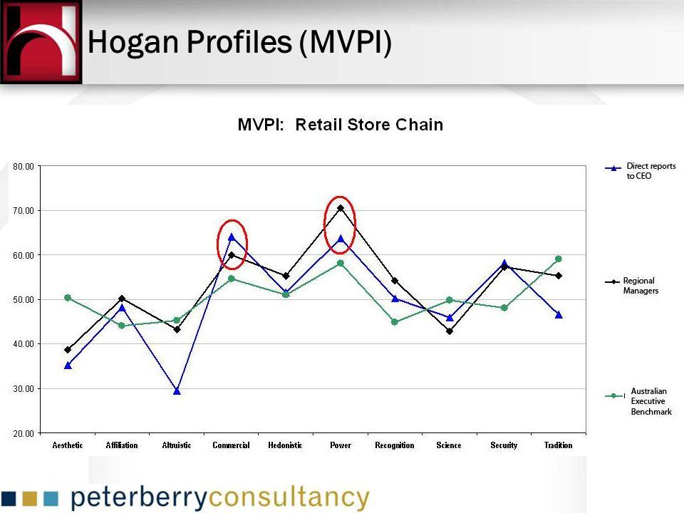 Hogan Profiles (MVPI)