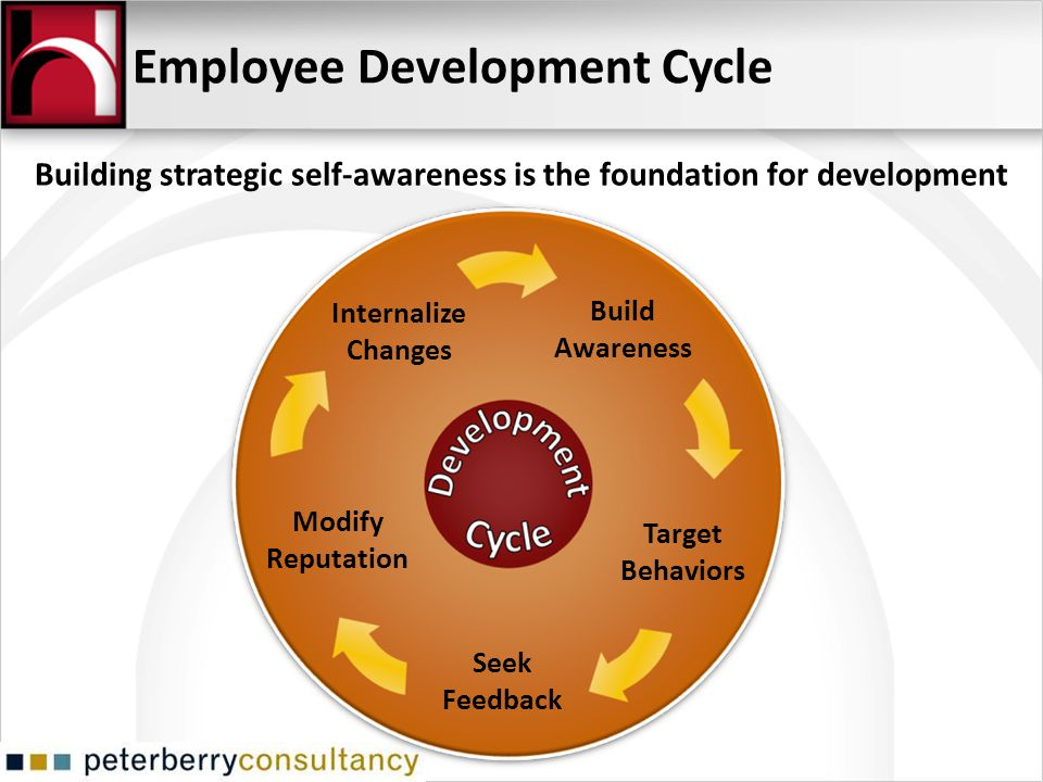 Employee Development Cycle Internalize Changes Build Awareness Target Behaviors Seek Feedback Modify Reputation Building strategic self-awareness is t