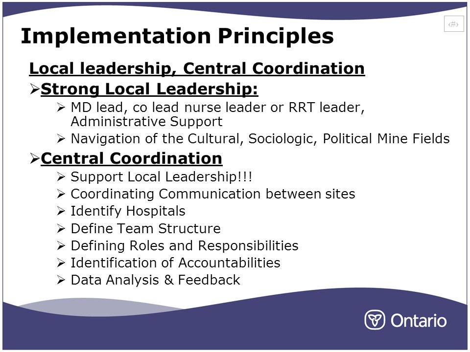 29 Implementation Principles Local leadership, Central Coordination Strong Local Leadership: MD lead, co lead nurse leader or RRT leader, Administrative Support Navigation of the Cultural, Sociologic, Political Mine Fields Central Coordination Support Local Leadership!!.