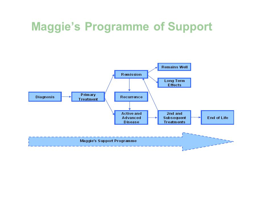 Maggies Programme of Support