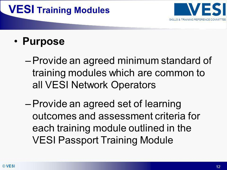 12 © VESI SKILLS & TRAINING REFERENCE COMMITTEE VESI Training Modules Purpose –Provide an agreed minimum standard of training modules which are common