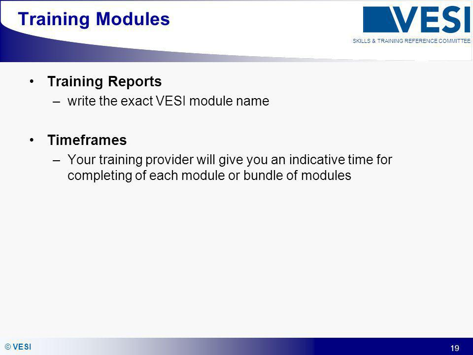 19 © VESI SKILLS & TRAINING REFERENCE COMMITTEE Training Modules Training Reports –write the exact VESI module name Timeframes –Your training provider
