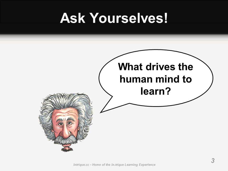 Intrique.cc - Home of the In.trique Learning Experience 3 Ask Yourselves! What drives the human mind to learn?