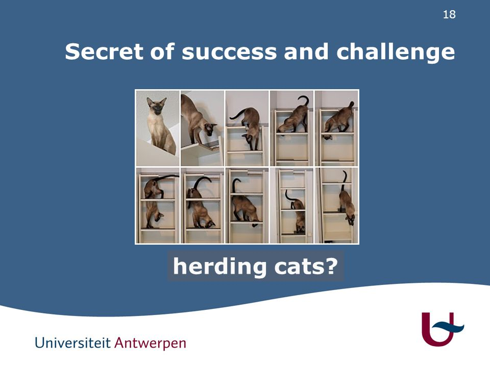 18 Secret of success and challenge cooperation herding cats?