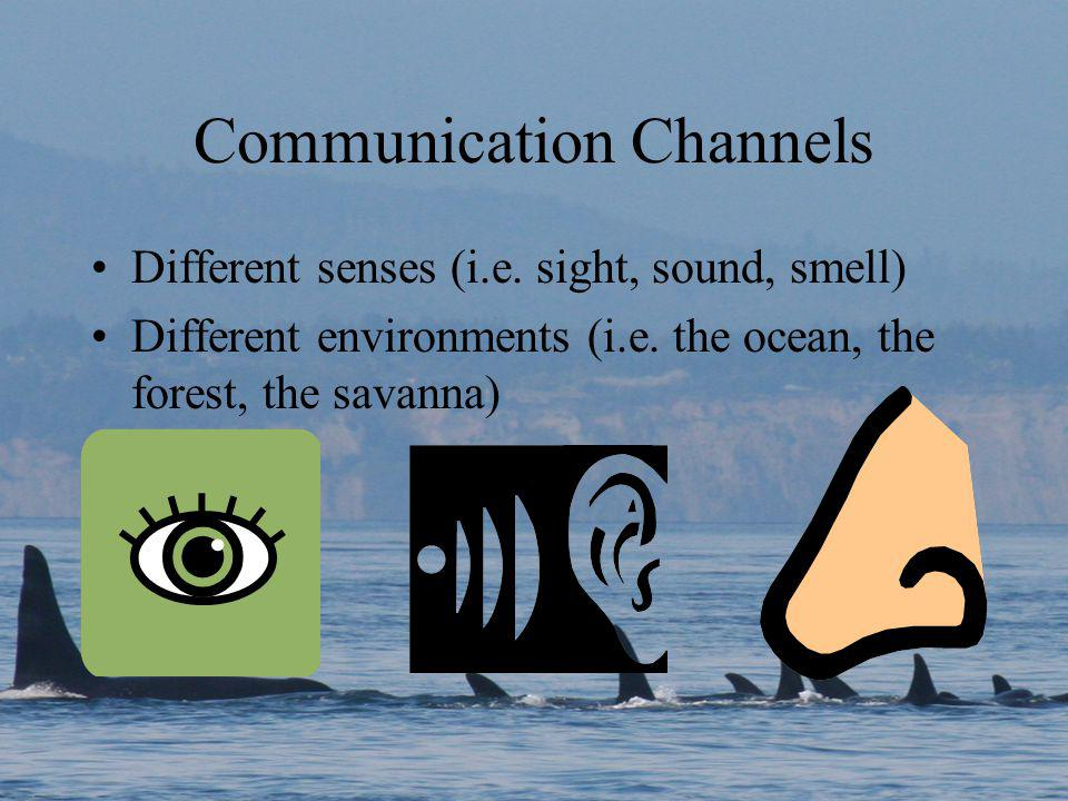 Communication Channels Different senses (i.e. sight, sound, smell) Different environments (i.e.
