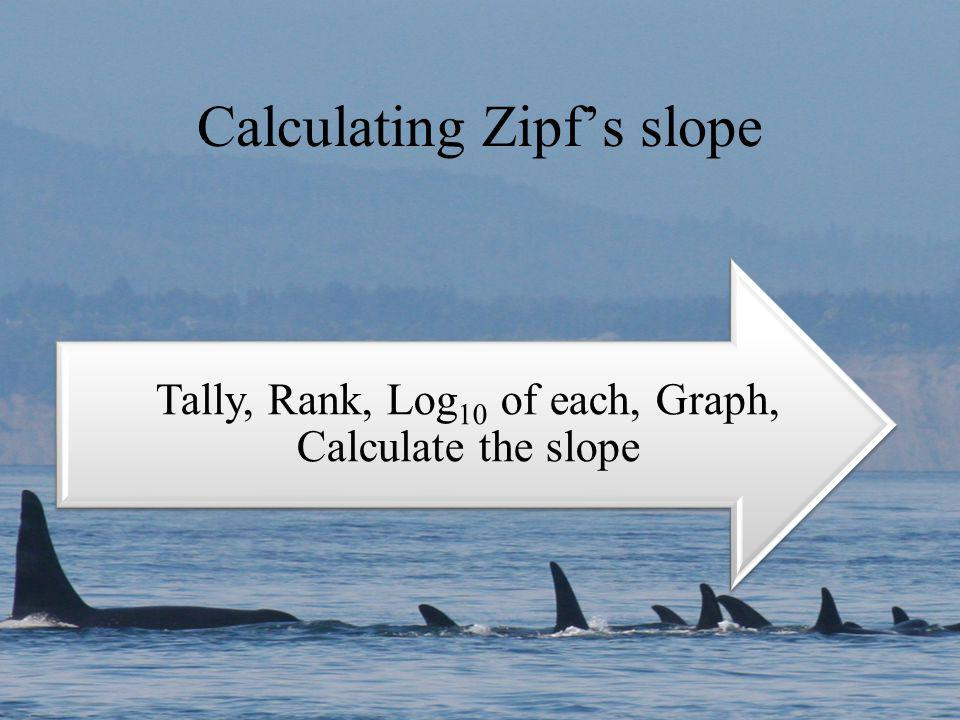 Calculating Zipfs slope Tally, Rank, Log10 of each, Graph, Calculate the slope
