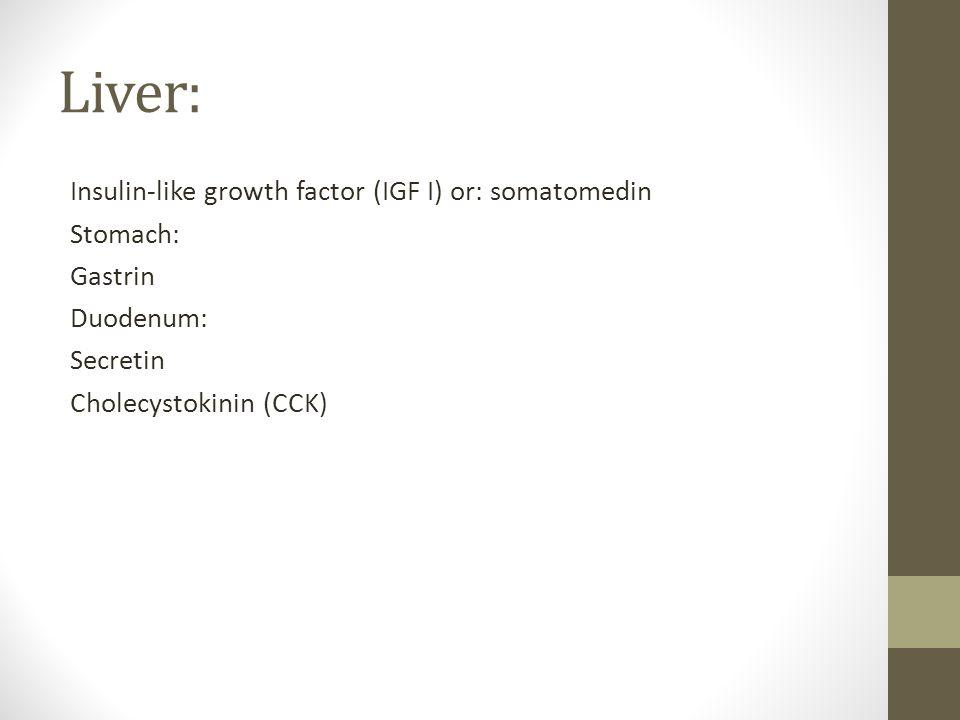 Liver: Insulin-like growth factor (IGF I) or: somatomedin Stomach: Gastrin Duodenum: Secretin Cholecystokinin (CCK)