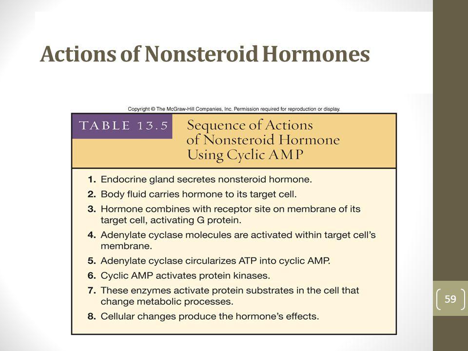 Actions of Nonsteroid Hormones 59