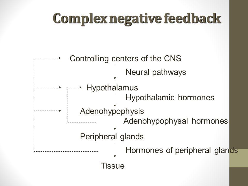 Complex negative feedback Controlling centers of the CNS Neural pathways Hypothalamus Hypothalamic hormones Adenohypophysis Adenohypophysal hormones P
