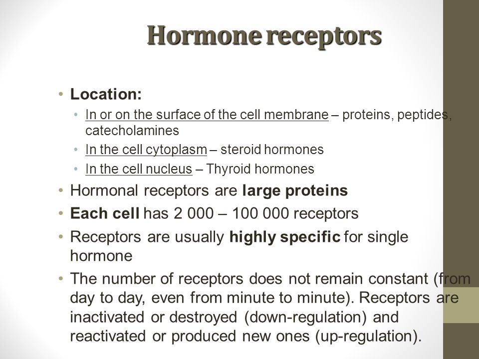 Hormone receptors Location: In or on the surface of the cell membrane – proteins, peptides, catecholamines In the cell cytoplasm – steroid hormones In