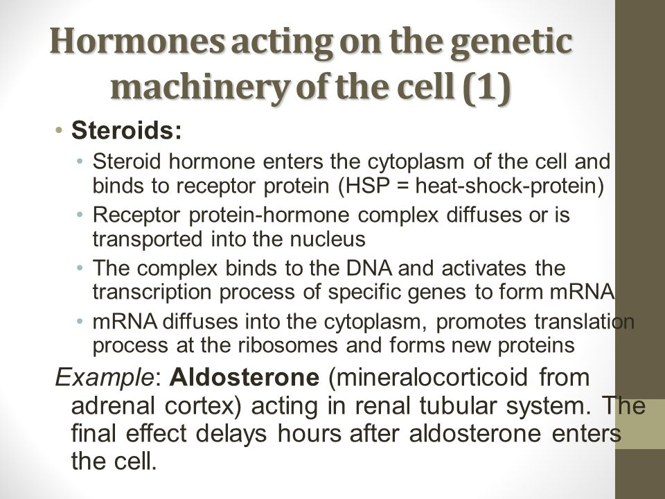 Hormones acting on the genetic machinery of the cell (1) Steroids: Steroid hormone enters the cytoplasm of the cell and binds to receptor protein (HSP