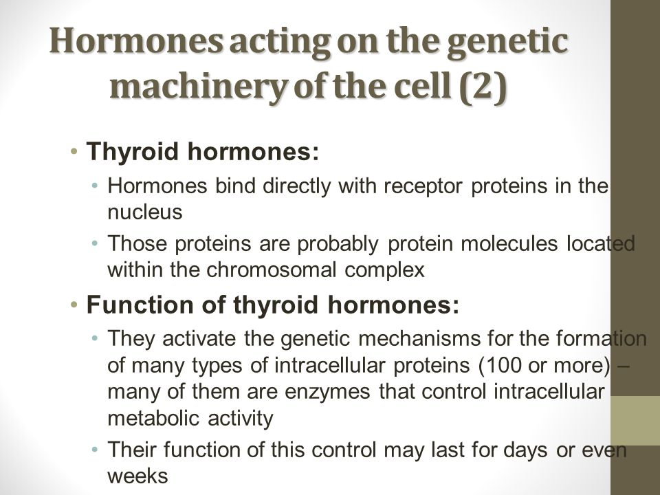 Hormones acting on the genetic machinery of the cell (2) Thyroid hormones: Hormones bind directly with receptor proteins in the nucleus Those proteins