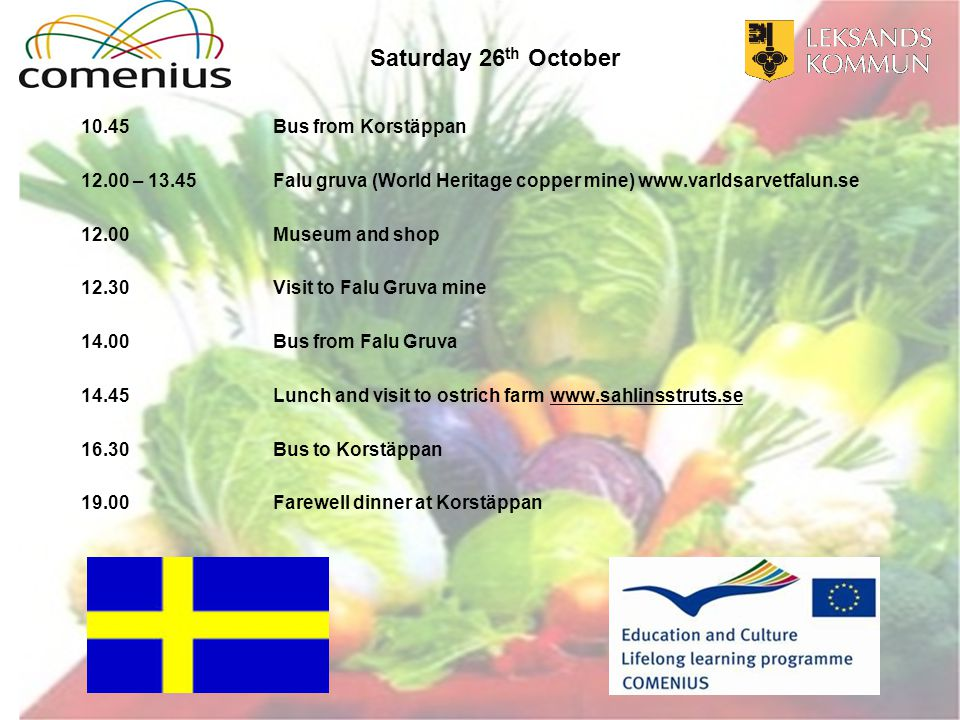 Saturday 26 th October 10.45Bus from Korstäppan 12.00 – 13.45Falu gruva (World Heritage copper mine) www.varldsarvetfalun.se 12.00Museum and shop 12.30 Visit to Falu Gruva mine 14.00 Bus from Falu Gruva 14.45 Lunch and visit to ostrich farm www.sahlinsstruts.sewww.sahlinsstruts.se 16.30Bus to Korstäppan 19.00Farewell dinner at Korstäppan