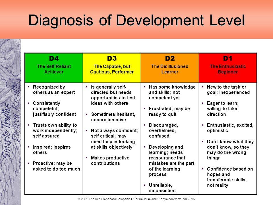 © 2001 The Ken Blanchard Companies. Her hakkı saklıdır. Kopya edilemez. V032702 Diagnosis of Development Level D4 The Self-Reliant Achiever D3 The Cap