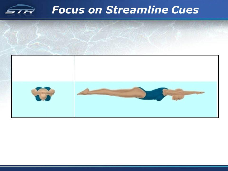 Focus on Streamline Cues