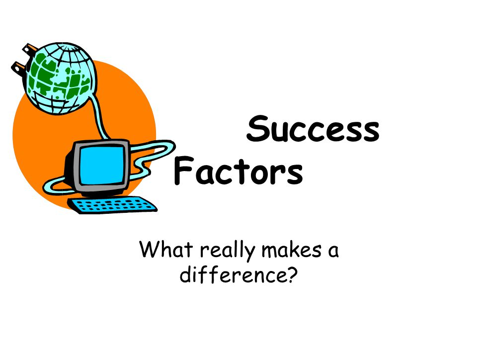 Success Factors What really makes a difference?