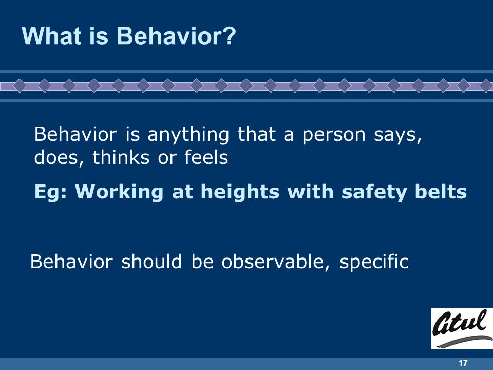 17 What is Behavior.