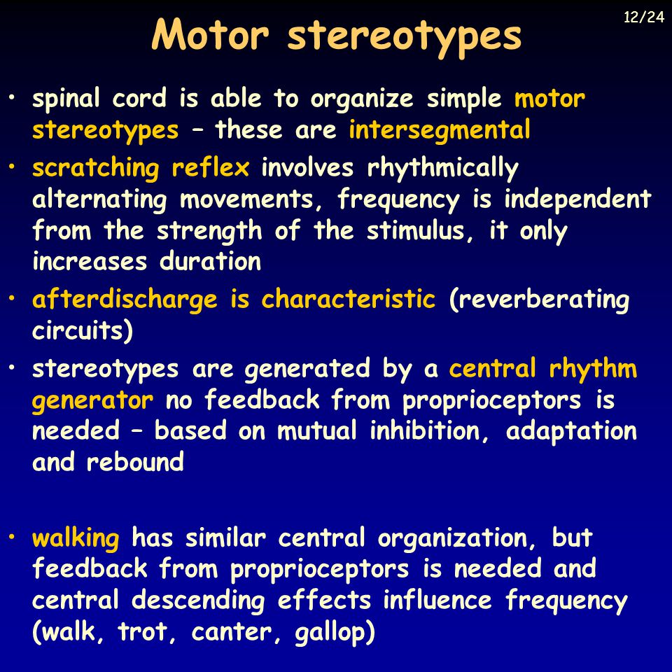 Motor stereotypes spinal cord is able to organize simple motor stereotypes – these are intersegmental scratching reflex involves rhythmically alternat