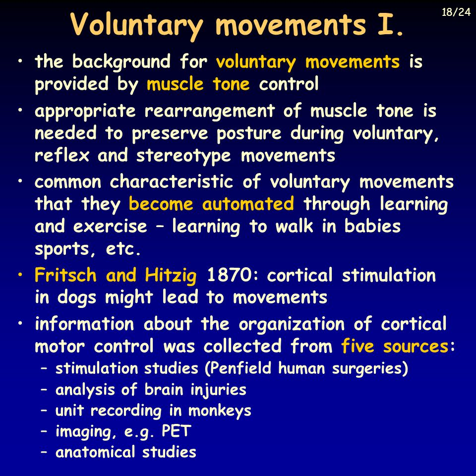 Voluntary movements I. the background for voluntary movements is provided by muscle tone control appropriate rearrangement of muscle tone is needed to