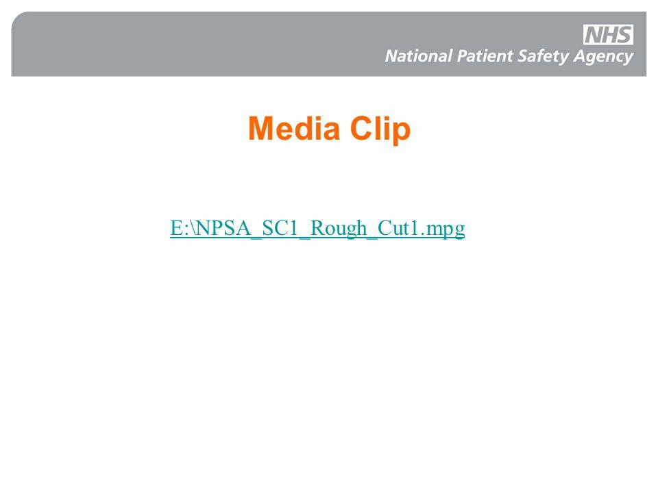 Media Clip E:\NPSA_SC1_Rough_Cut1.mpg
