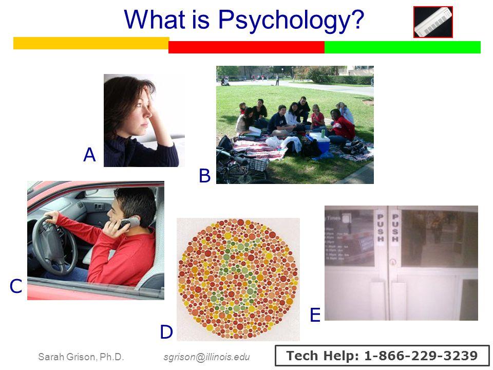 Sarah Grison, Ph.D. sgrison@illinois.edu Tech Help: 1-866-229-3239 What is Psychology? A B C D E