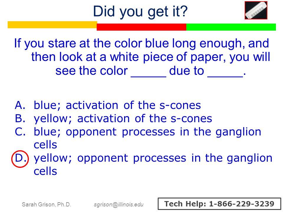 Sarah Grison, Ph.D. sgrison@illinois.edu Tech Help: 1-866-229-3239 A.blue; activation of the s-cones B.yellow; activation of the s-cones C.blue; oppon