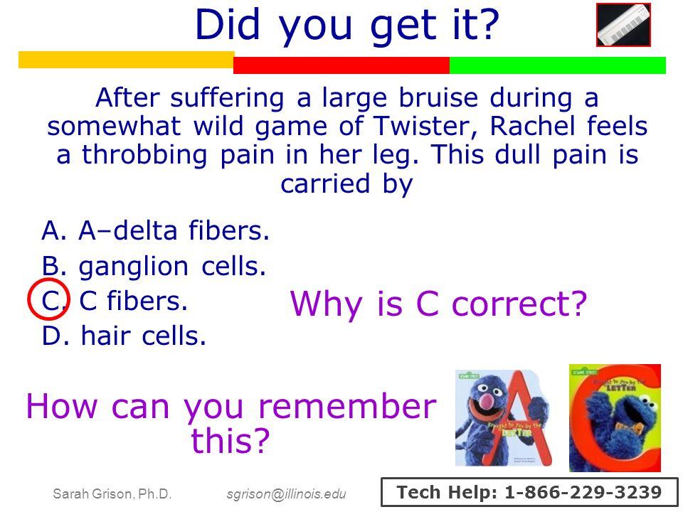 Sarah Grison, Ph.D. sgrison@illinois.edu Tech Help: 1-866-229-3239 Did you get it.
