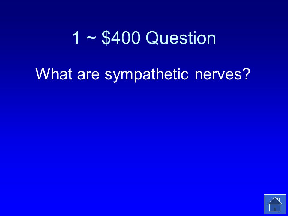 1 ~ $400 Answer These nerves in the autonomic nervous system take control during a fight or flight situation.
