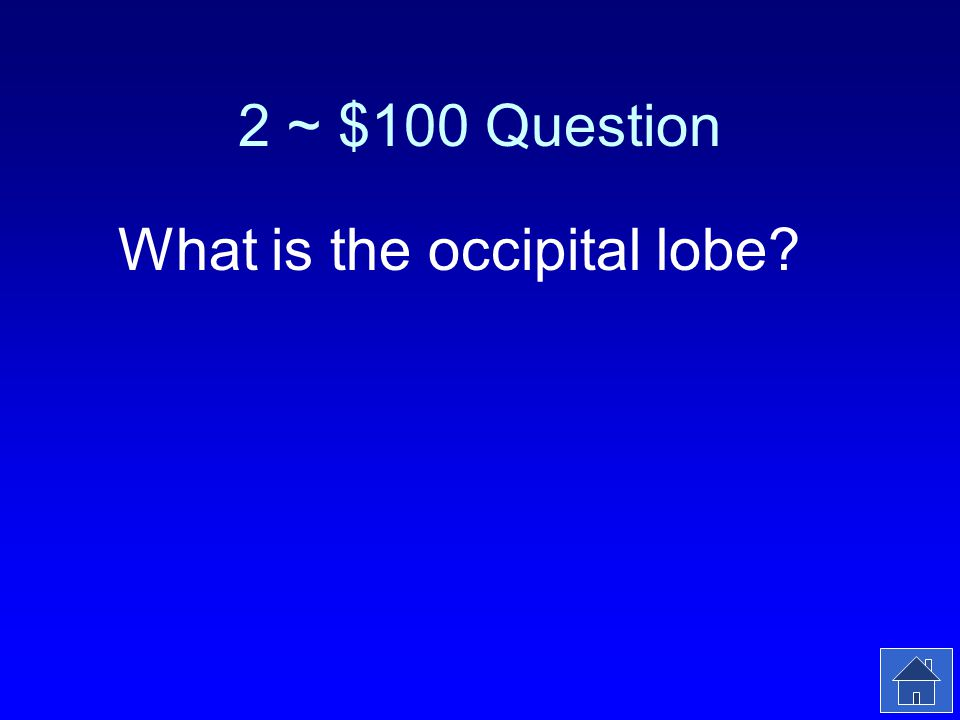 2 ~ $100 Answer This part of the cerebral cortex receives visual sensory information.