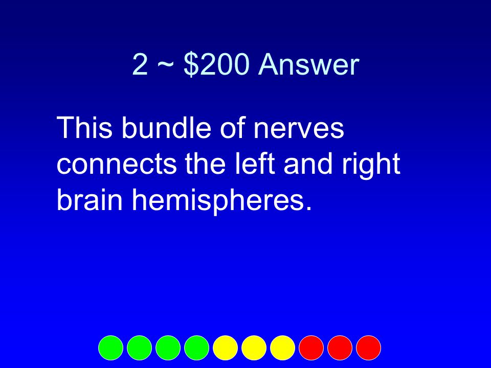 2 ~ $100 Question What is the occipital lobe?
