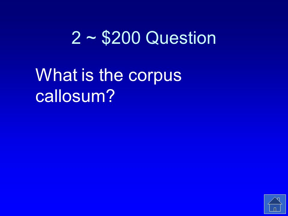 2 ~ $200 Answer This bundle of nerves connects the left and right brain hemispheres.