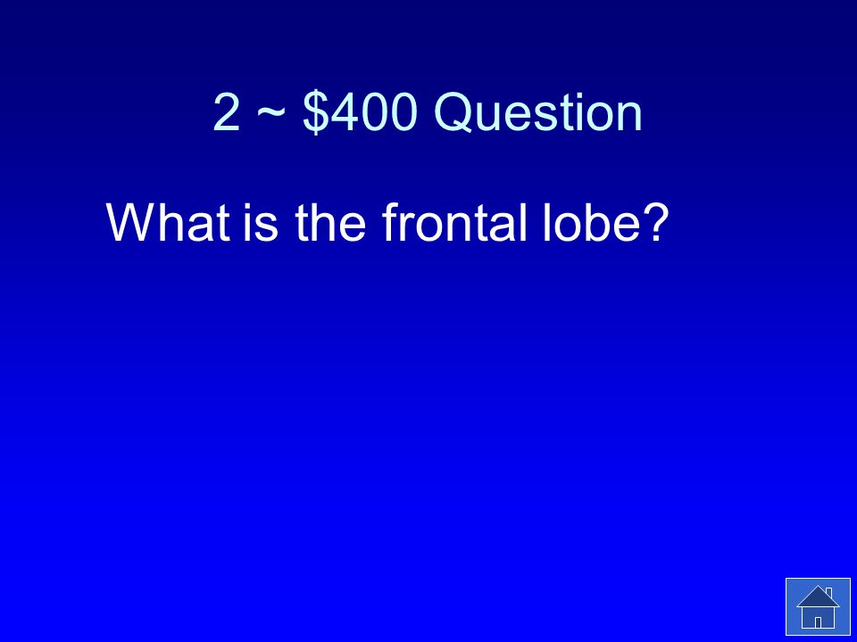 2 ~ $400 Answer Damaging this part of your cerebral cortex can affect your personality.