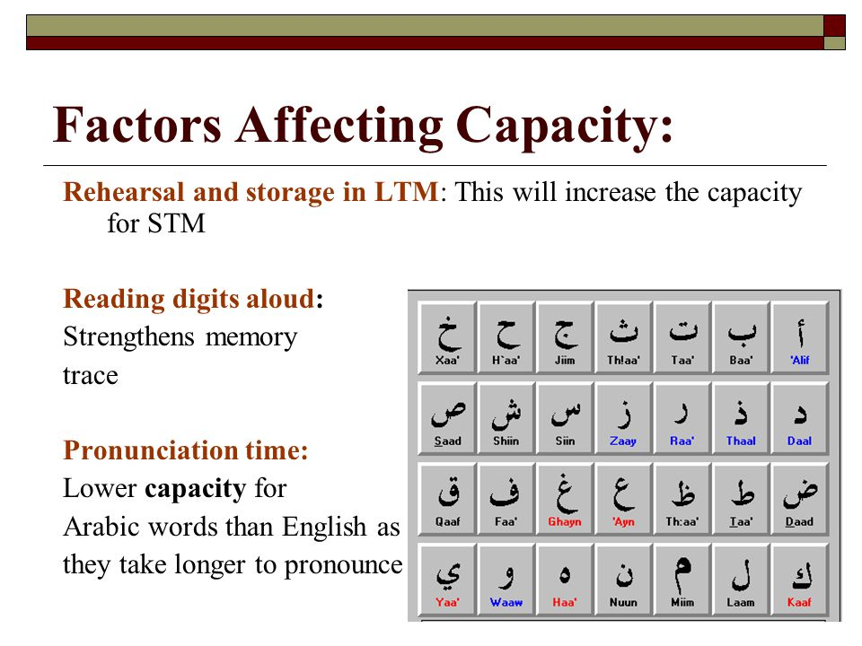 Factors Affecting Capacity: Rehearsal and storage in LTM: This will increase the capacity for STM Reading digits aloud: Strengthens memory trace Pronu