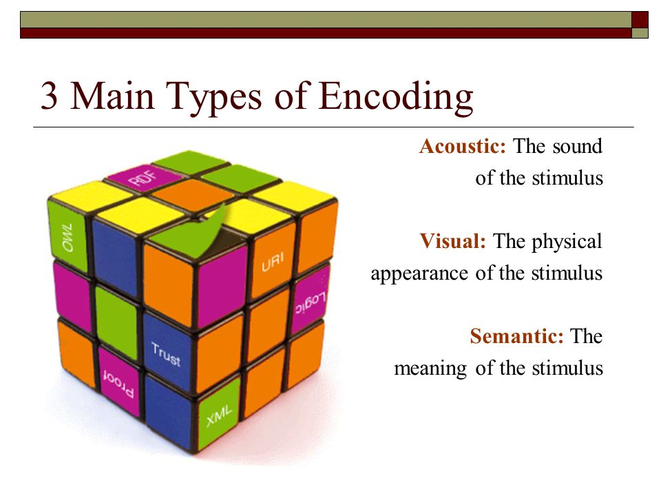 3 Main Types of Encoding Acoustic: The sound of the stimulus Visual: The physical appearance of the stimulus Semantic: The meaning of the stimulus