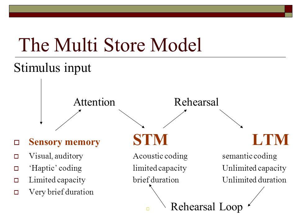 The Multi Store Model Stimulus input Attention Rehearsal Sensory memory STMLTM Visual, auditoryAcoustic codingsemantic coding Haptic codinglimited cap