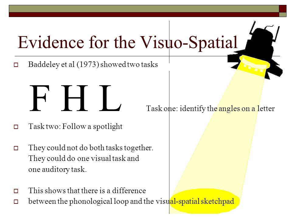 Evidence for the Visuo-Spatial Baddeley et al (1973) showed two tasks F H L Task one: identify the angles on a letter Task two: Follow a spotlight The