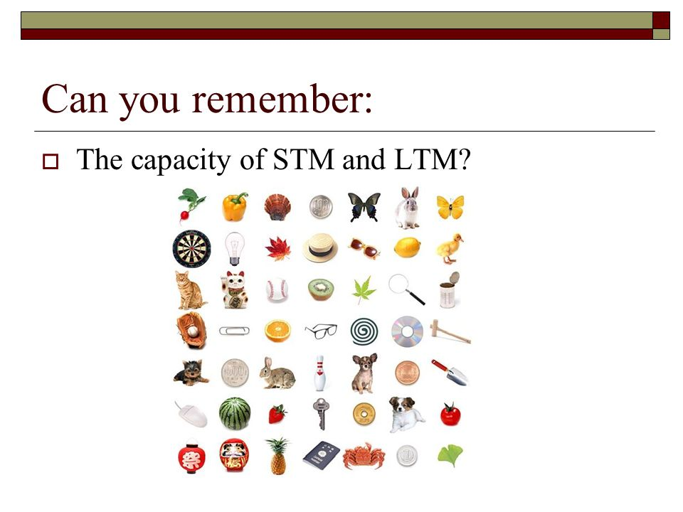 Can you remember: The capacity of STM and LTM?