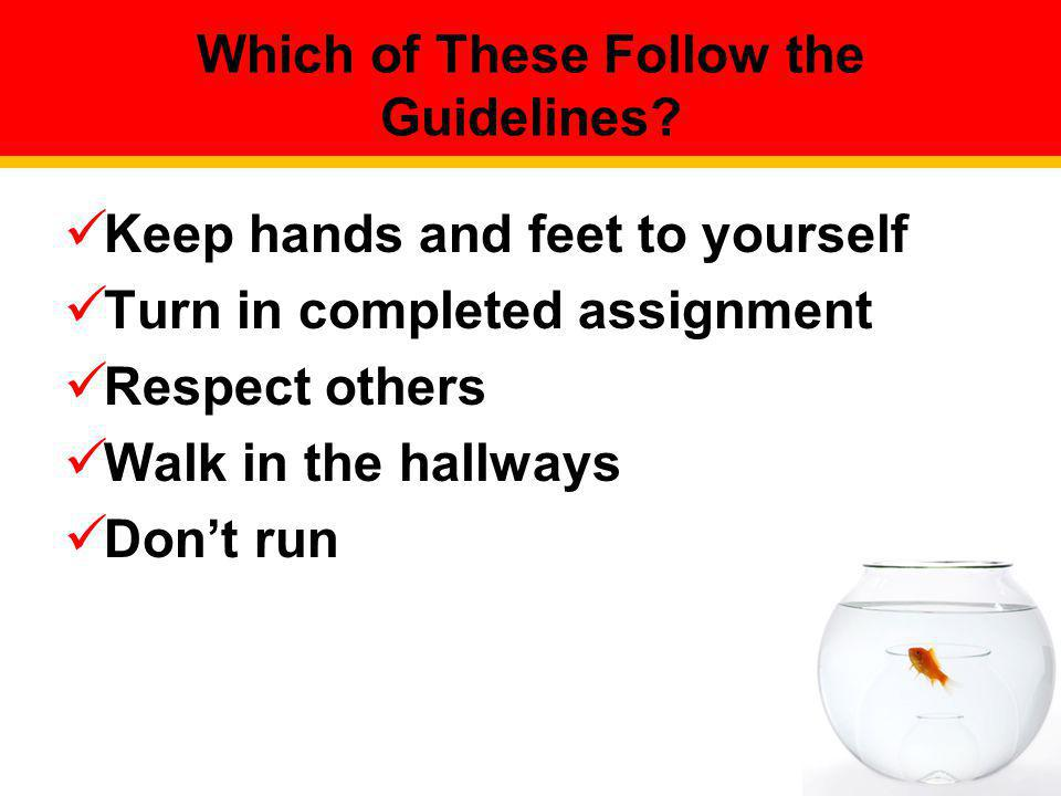 Which of These Follow the Guidelines? Keep hands and feet to yourself Turn in completed assignment Respect others Walk in the hallways Dont run