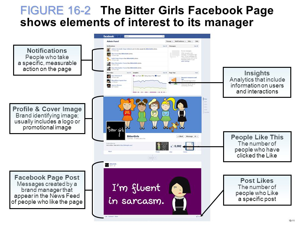 FIGURE 16-2 FIGURE 16-2 The Bitter Girls Facebook Page shows elements of interest to its manager Insights Analytics that include information on users